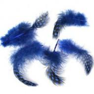 Veren Blauw (set van 5)