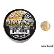 Carnaval Acrylpoeder Gold Mine